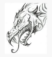 Dragon-2009 Photographic Print