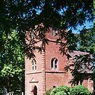 ST LUKES CHURCH IN SMITHFIELD VA. CIRCA 1632  by NEIL STUART COFFEY