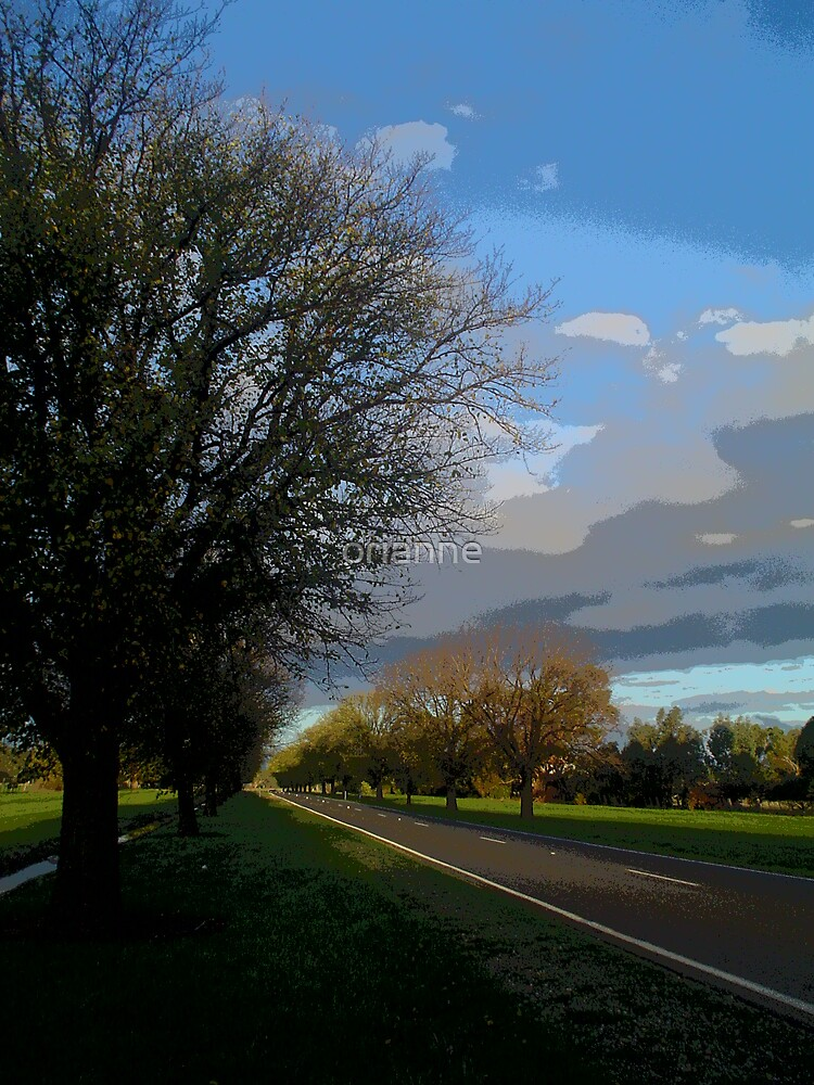 Along the road by orianne
