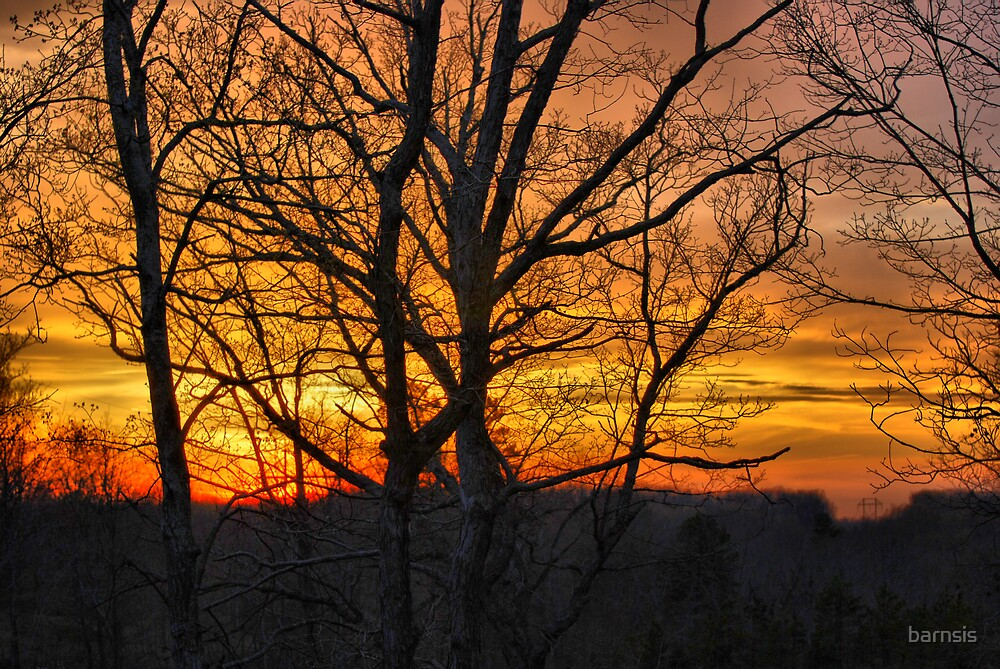 Sunset Behind the Trees by barnsis