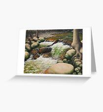 Black Rock Falls Greeting Card