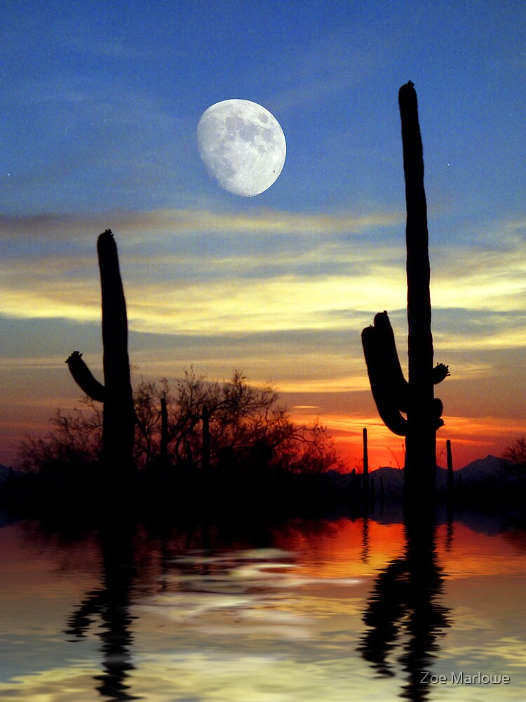 Saguaro Summer by Zoe Marlowe