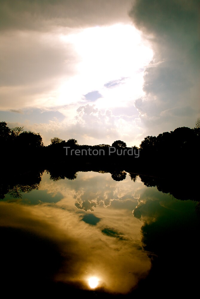 Sun in the Water by Trenton Purdy