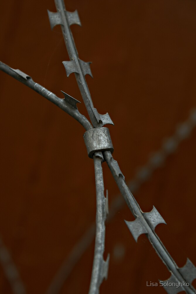 Razor Wire by Lisa Solonynko