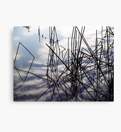 summer in the sky Canvas Print