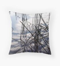 summer in the sky Throw Pillow