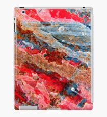 Colours of the Reef iPad Case/Skin