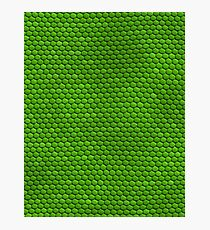Dragon Skin- Green Photographic Print