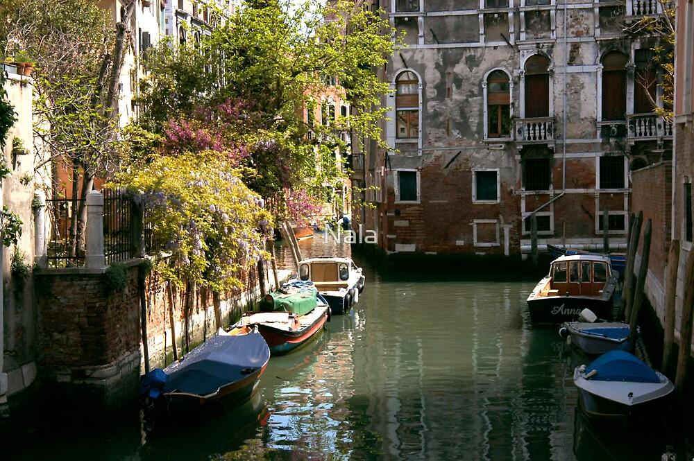 Venice by Nala