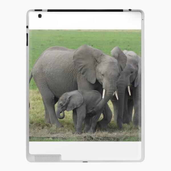Elephant Family Photo iPad Skin