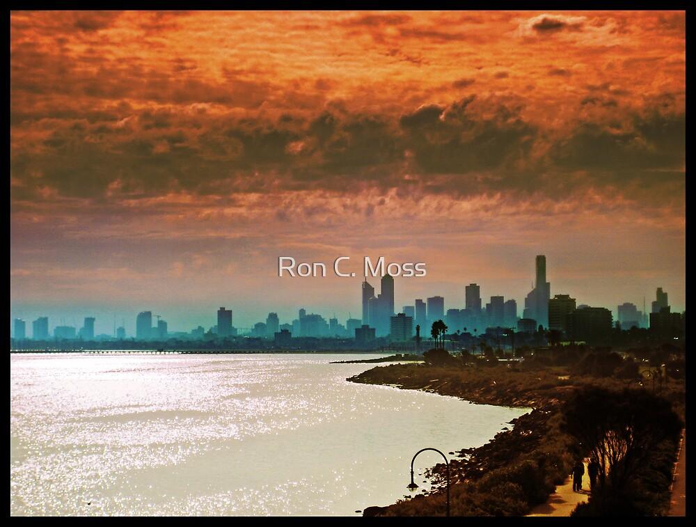 City of Melbourne, Australia by Ron C. Moss
