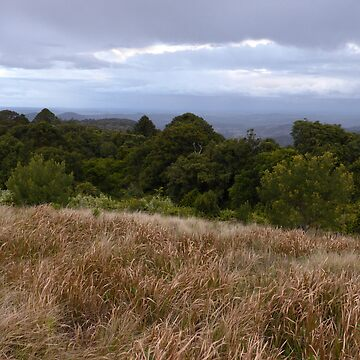 View from the Bunya Mountains by annyarden