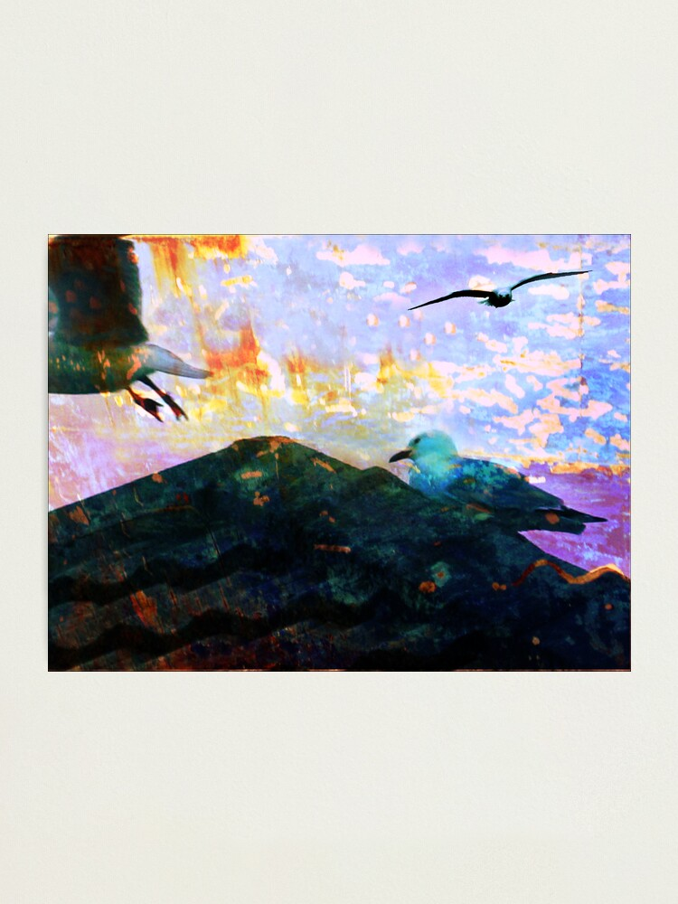 Alternate view of City Gulls Photographic Print