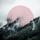 Foggy Woods 2 by Mareike Böhmer