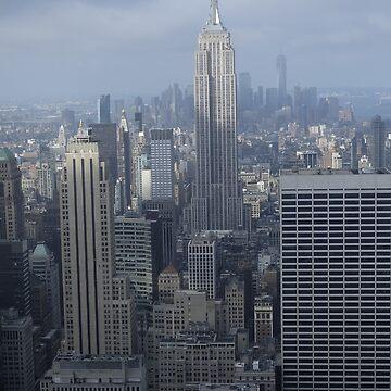 New York State of Mine by sssealegs