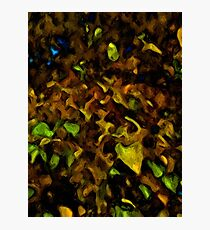 Gold Leaves with some Green and Brown Photographic Print
