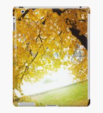 Fall concept, autumn nature in city park outdoors iPad Case/Skin