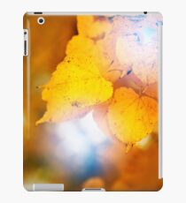 Fall concept, close up of yellow leaves iPad Case/Skin