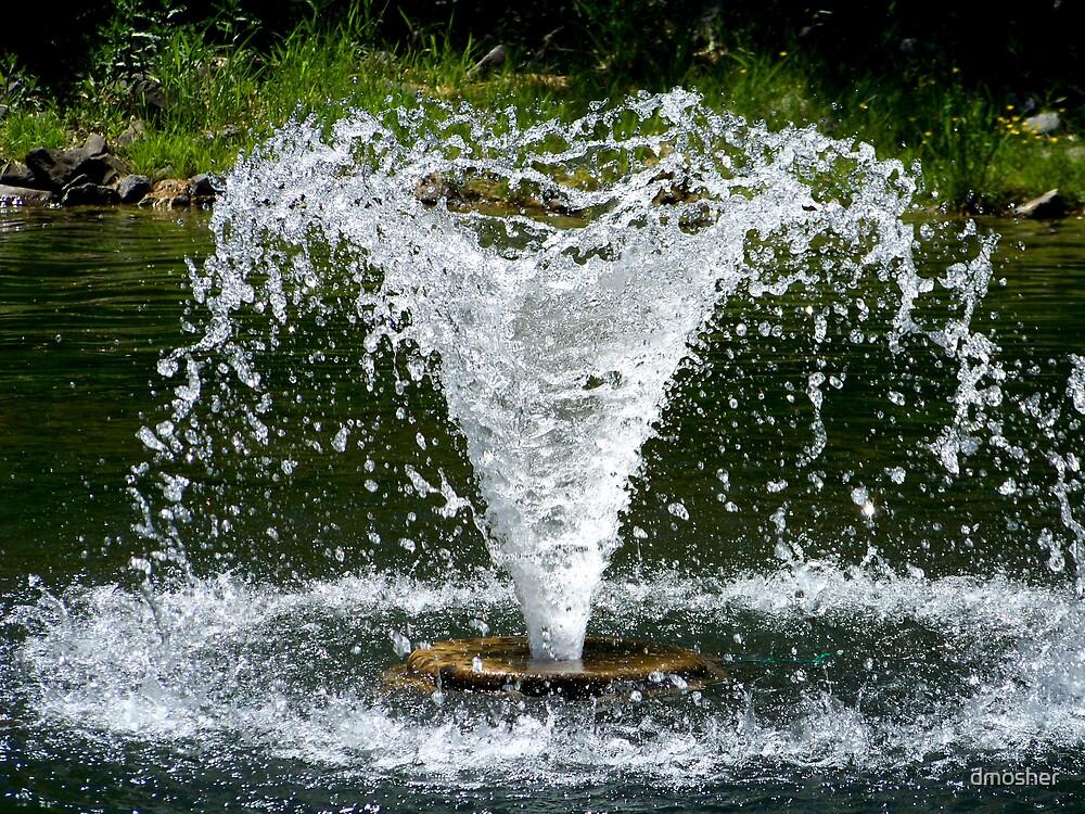 Splash by dmosher