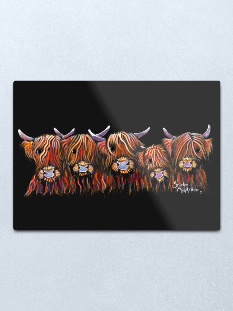 Alternate view of Scottish Highland Hairy Cows 'The Hairy Bunch of Coos' by Shirley MacArthur Metal Print