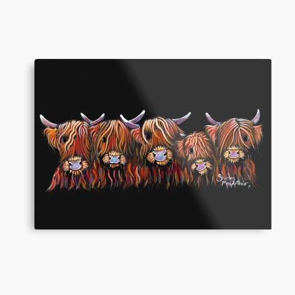 Scottish Highland Hairy Cows 'The Hairy Bunch of Coos' by Shirley MacArthur Metal Print