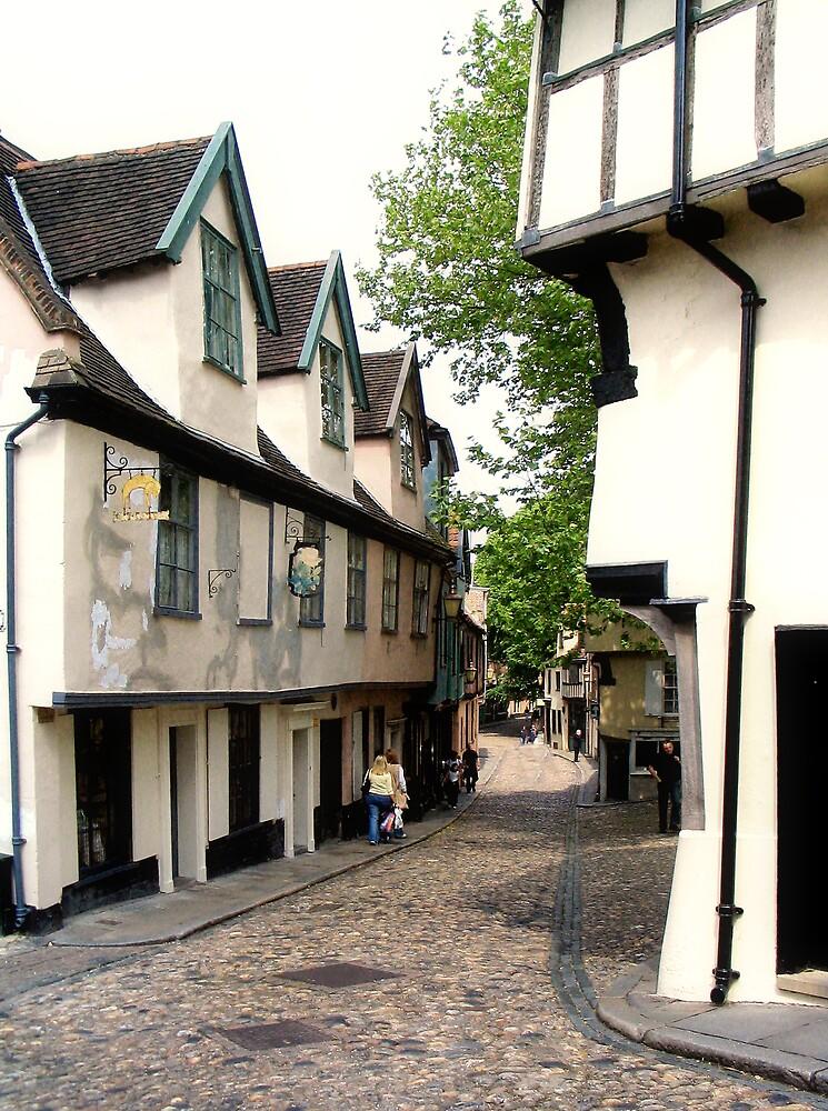 Off Elm Hill, Norwich  by BizziLizzy