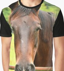 My Kingdom for a Horse !! Graphic T-Shirt