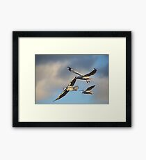 The Sign of Three Framed Print