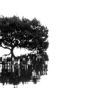 Mangrove Tree by silvtom