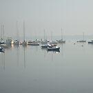 Malahide Co. Dublin. Ireland Broadmeadow Estuary by Margaret Zita Coughlan