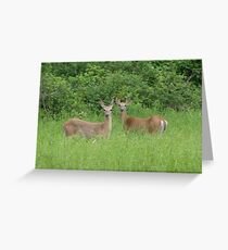 Alert Greeting Card