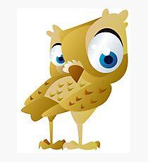 Funny owl Photographic Print
