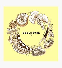 The Collector Photographic Print