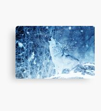 Lonely Wolf in the ice Phone Cover Canvas Print