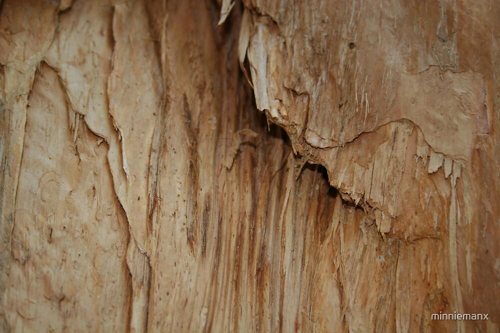 Paper Bark by minniemanx