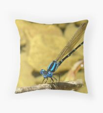 Blue Damselfly Throw Pillow