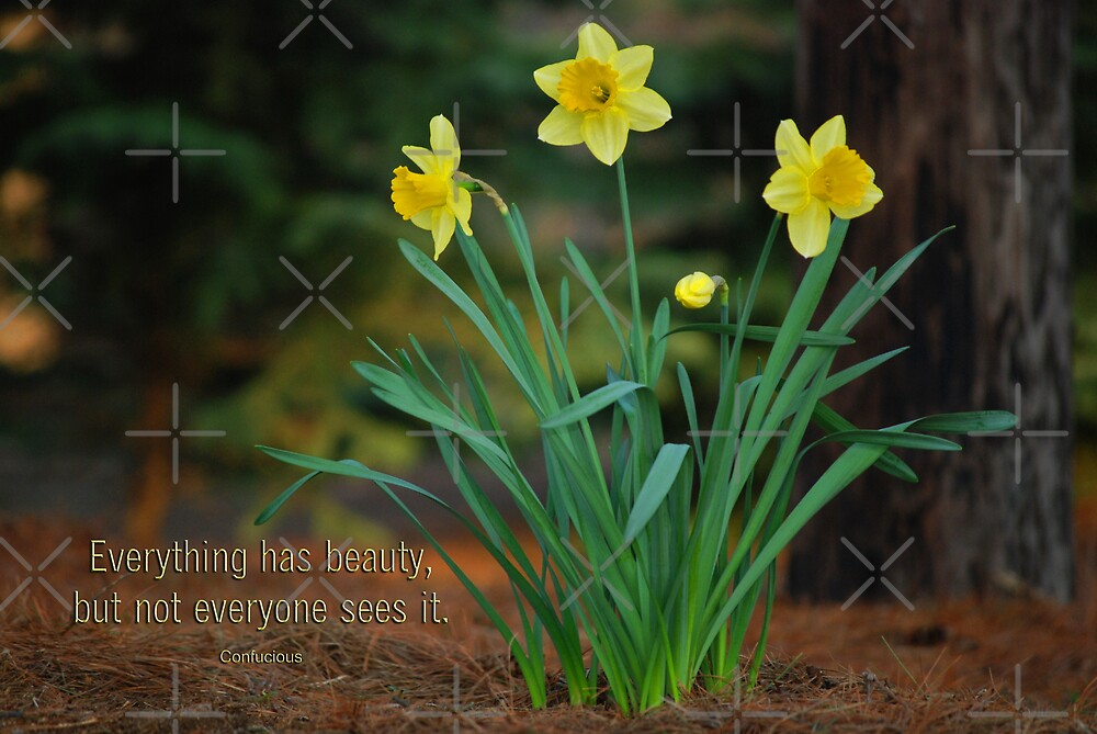 Everything Has Beauty by Maria Dryfhout