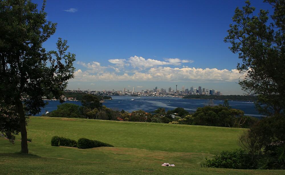 Sydney harbour by William Mason