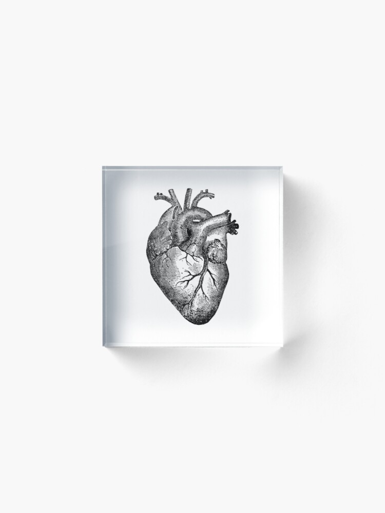 Alternate view of Vintage Heart Anatomy Acrylic Block
