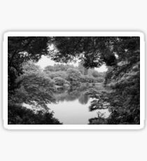 Black and white nature, forest, lake photography in Tokyo Sticker
