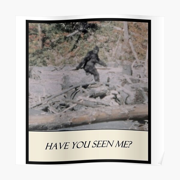 Bigfoot - Have You Seen Me Poster