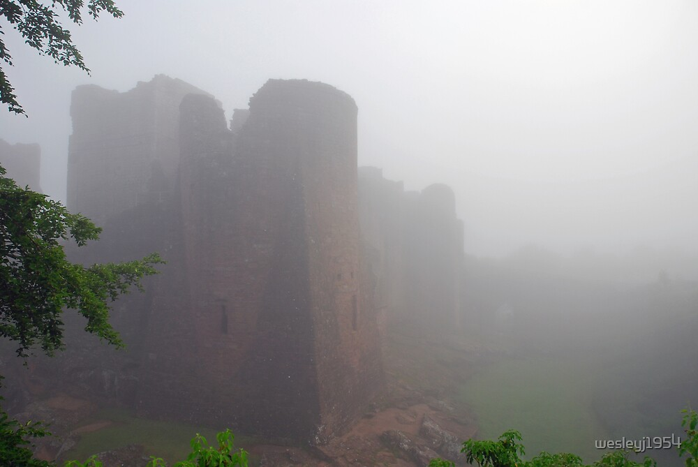 Castle in the mist by wesleyj1954