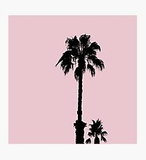 Palm Tree Silhouettes On Pink Photographic Print