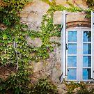 Window  by Jacinthe Brault