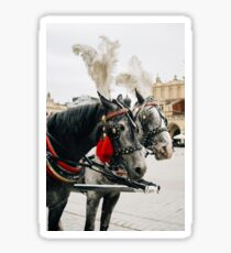 Carriage Horses Sticker
