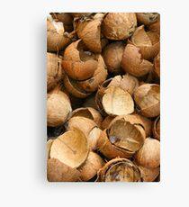 Pile of Coconut Shells Canvas Print