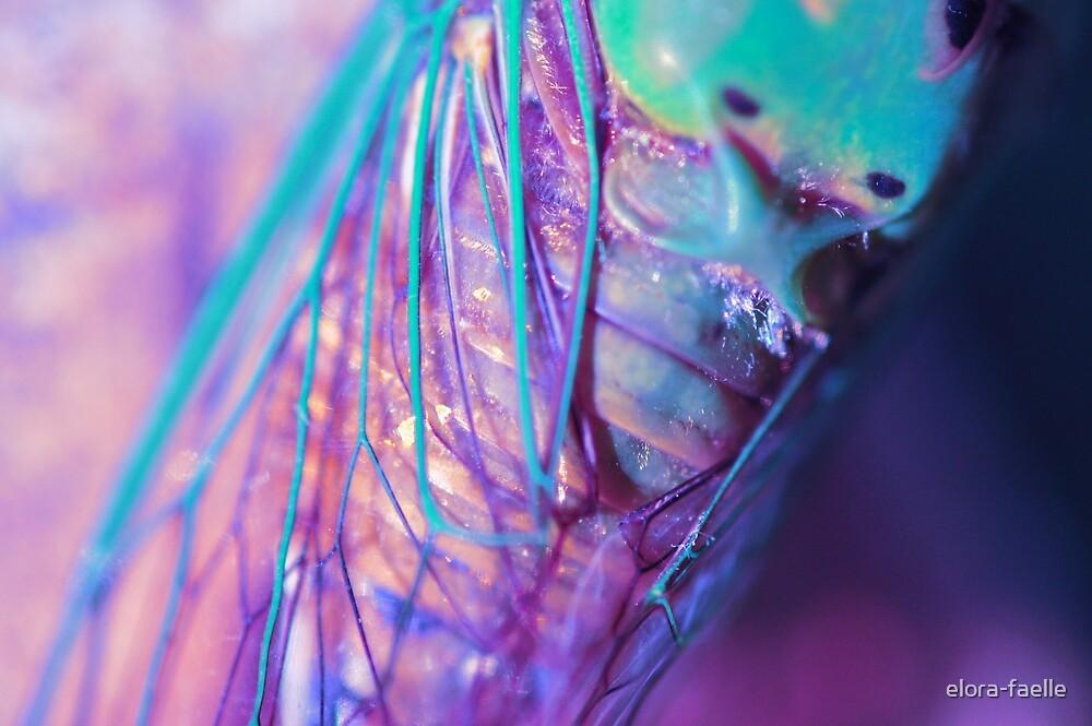 Cicada Fairy by elora-faelle