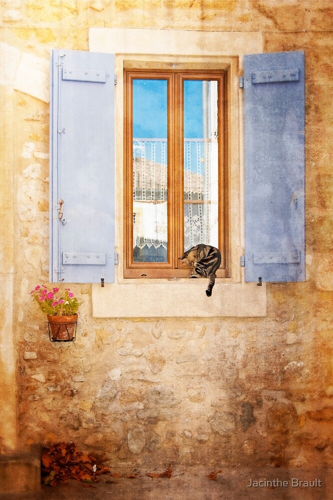 Cat by the window by Jacinthe Brault