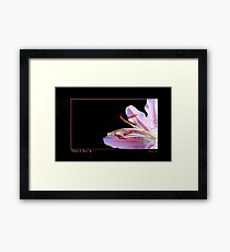 Pink a Boo - For Breast Cancer Survivors Framed Print
