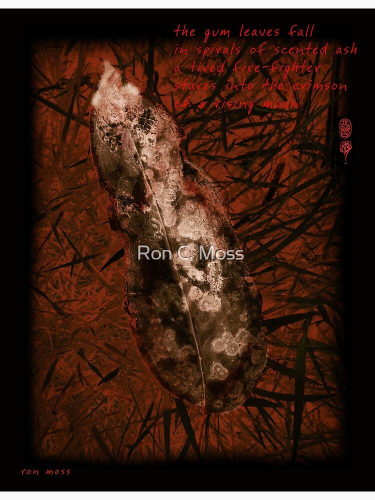 Crimson Moon by ronmoss